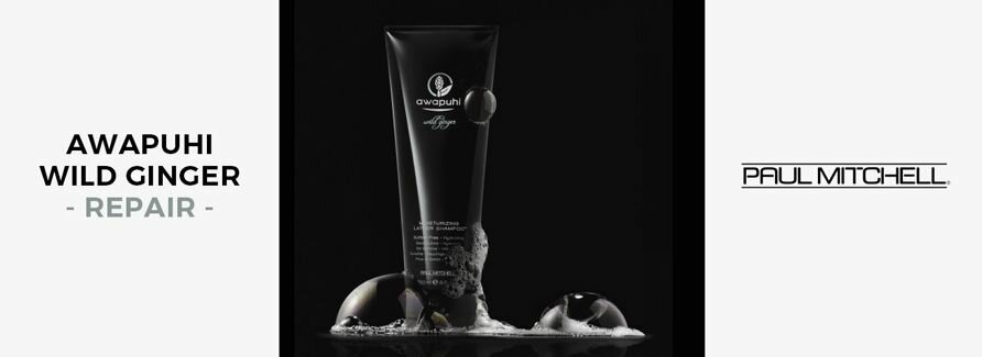 Paul Mitchell Awapuhi Wild Ginger Repair