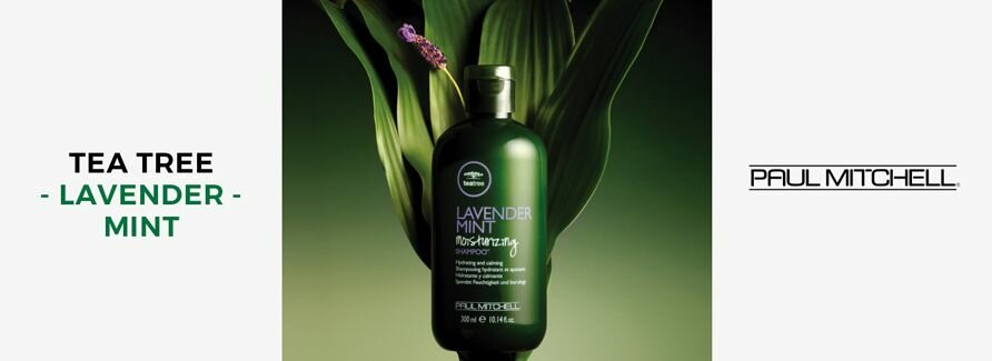 Paul Mitchell Tea Tree Lavender Mint